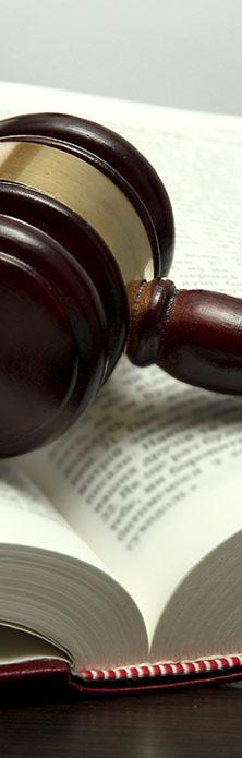 Servicios jurídicos y legales